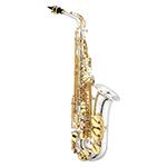 1100 Series JAS1100SG Alto Saxophone